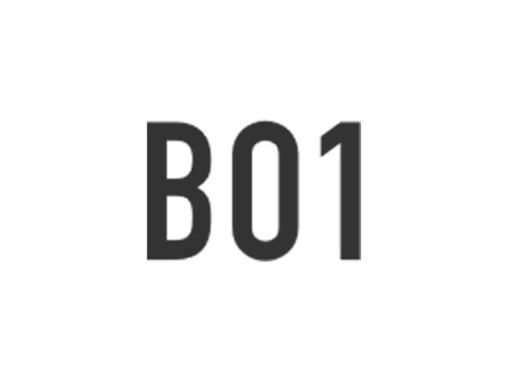BO1 - Visionnaire   Fábrica de Software
