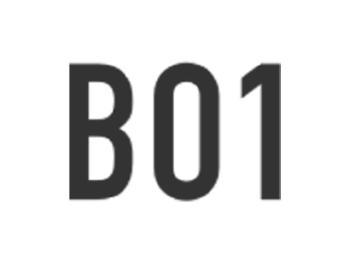 BO1 -