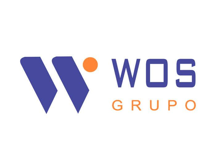 Grupo WOS - Visionnaire | Software Factory